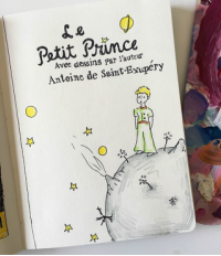 Le Petit Prince Illustrated Book Cover